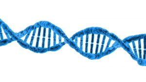 dna could cost you your insurance policy- barlow family insurance